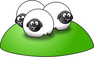 sheep-baaaa