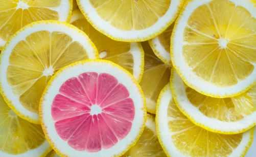 sliced of citrus lemons